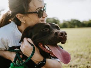 Geschenke für Hundebesitzer Fotoshooting